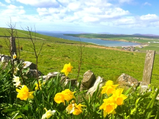 Orkney May 2018